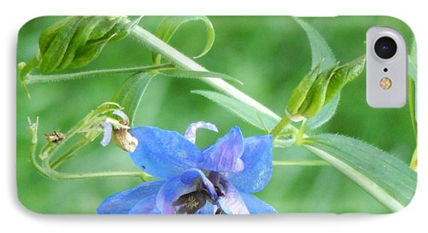 Delphinium Blossom IPhone Case