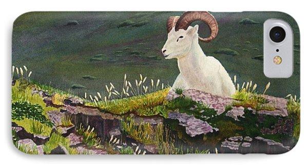 Denali Dall Sheep IPhone Case