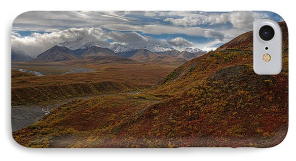 Denali National Park IPhone Case by Darlene Bushue