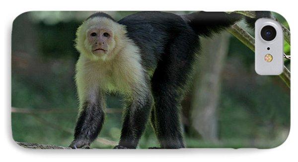 Denizen Of The Rainforest IPhone Case