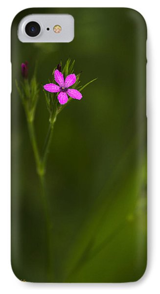 Deptford Pink Phone Case by Christina Rollo
