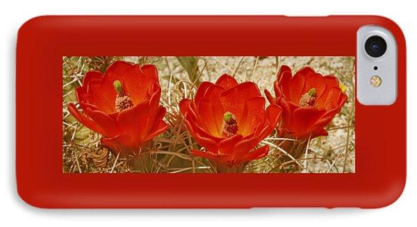 Desert Blooms Phone Case by Ben and Raisa Gertsberg