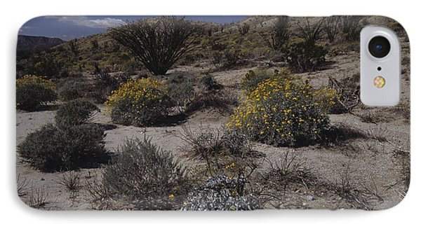 Desert Canyon And Wildflowers IPhone Case