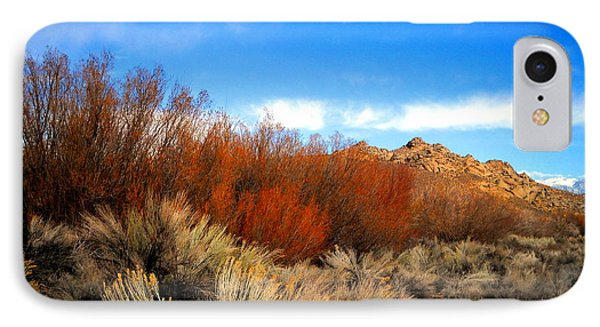 IPhone Case featuring the photograph Desert Colors by Marilyn Diaz