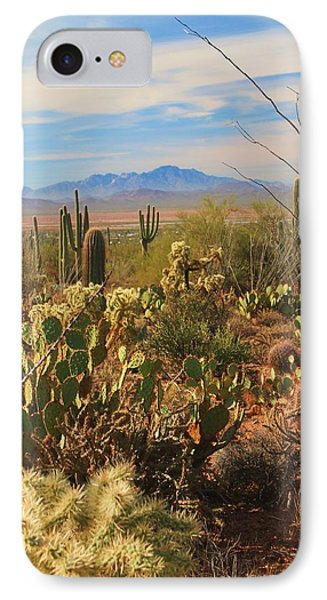 Desert Day IPhone Case by Alicia Knust