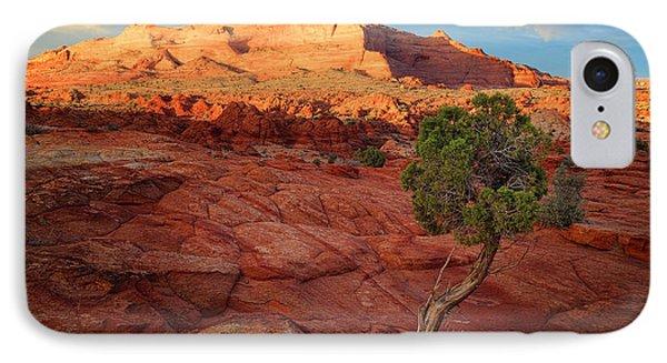 Desert Juniper Phone Case by Inge Johnsson