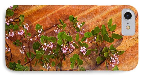 Desert Manzanita IPhone Case by Inge Johnsson
