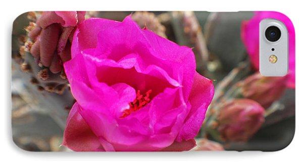 Desert Rose Phone Case by Rebecca Christine Cardenas