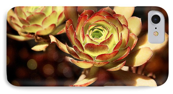 Desert Roses IPhone Case by Ellen Cotton