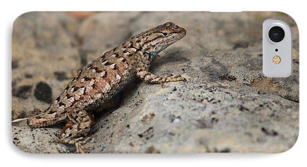 Desert Spiny Lizard IPhone Case