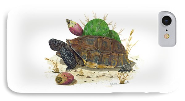 Desert Tortoise IPhone Case by Cindy Hitchcock