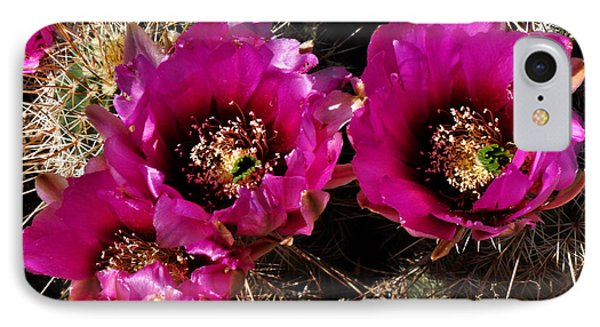 IPhone Case featuring the photograph Desert Wildflower by Diane Lent