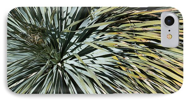 Desert Yucca IPhone Case by Avian Resources