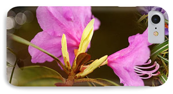 Details Of Early Spring Flowers IPhone Case by Panoramic Images
