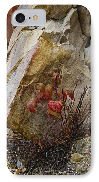 IPhone Case featuring the photograph Determined by Rhonda McDougall