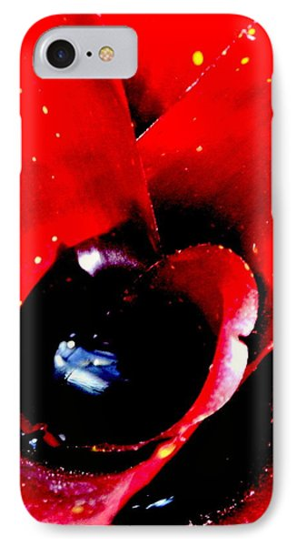 IPhone Case featuring the photograph Devilish Eye Of The Bromeliad by Antonia Citrino