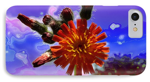 Devil's Paintbrush IPhone Case