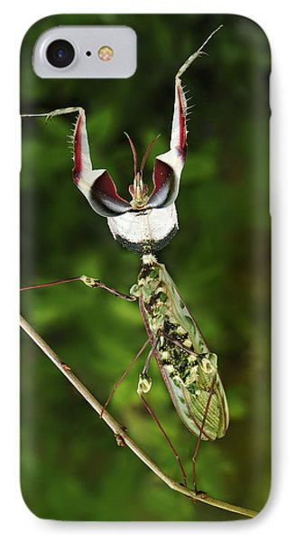 Devils Praying Mantis In Defensive IPhone Case by Thomas Marent