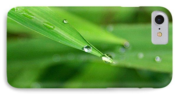 Dew Drop IPhone Case by Jean Haynes
