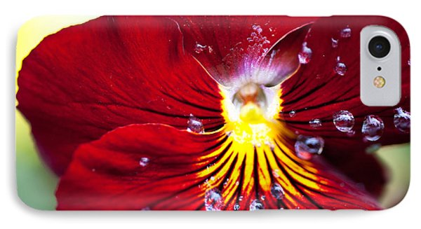IPhone Case featuring the photograph Dew Drops by Crystal Hoeveler