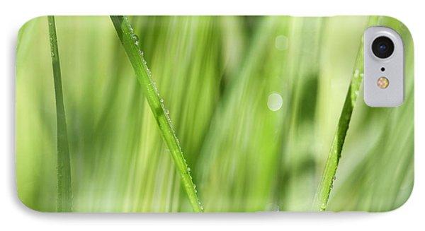 Dew Drops In Long Sunlit Grass Phone Case by Natalie Kinnear