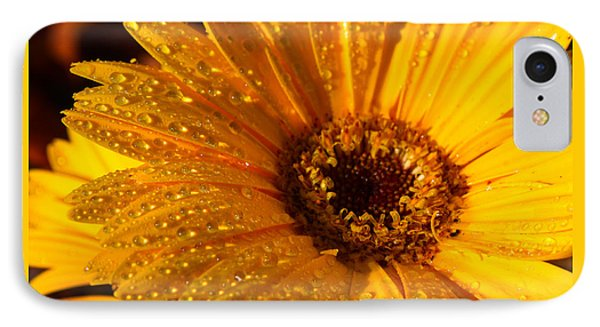 IPhone Case featuring the photograph Dew On A Daisy by Richard Stephen