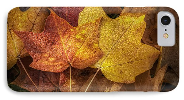 Dew On Autumn Leaves IPhone Case by Scott Norris
