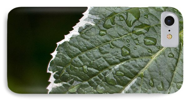 IPhone Case featuring the photograph Dew On Leaf by Crystal Hoeveler