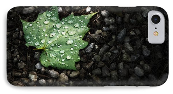 Dew On Leaf IPhone Case by Scott Norris