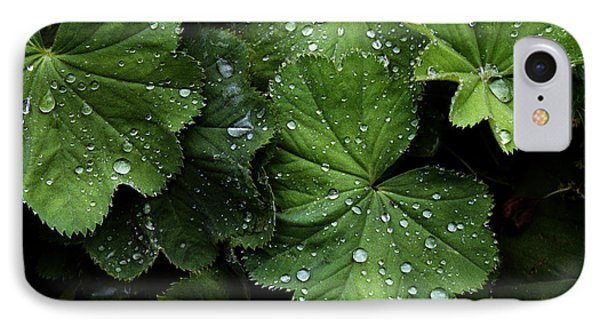 IPhone Case featuring the photograph Dew On Leaves by Tom Brickhouse