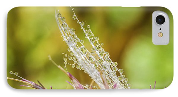 Dew On The Thistle Phone Case by Mitch Shindelbower