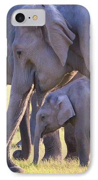 Dhikala Elephants IPhone Case by David Beebe