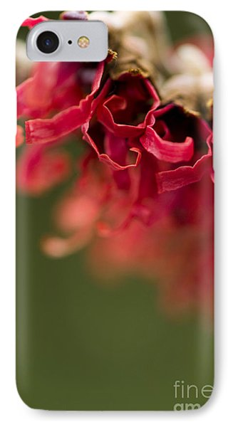 Diana The Hamamelis Phone Case by Anne Gilbert