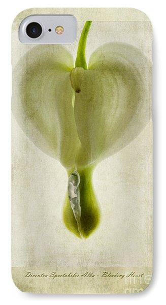 Dicentra Spectabilis Alba Phone Case by John Edwards