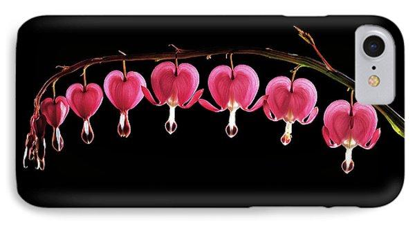 Dicentra Spectabilis Flowers IPhone Case by Gilles Mermet