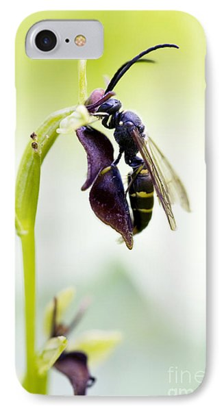 Digger Wasp And Fly Orchid IPhone Case