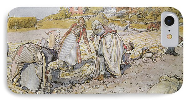Digging Potatoes IPhone Case by Carl Larsson