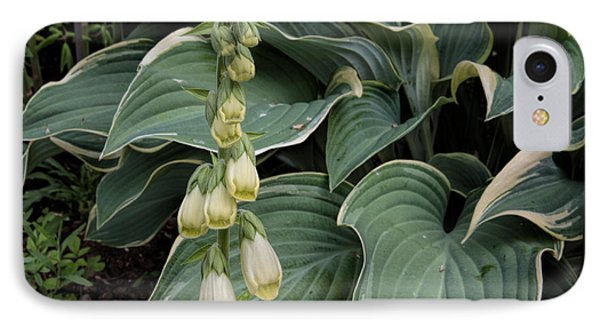 IPhone Case featuring the photograph Digitalis by Leif Sohlman