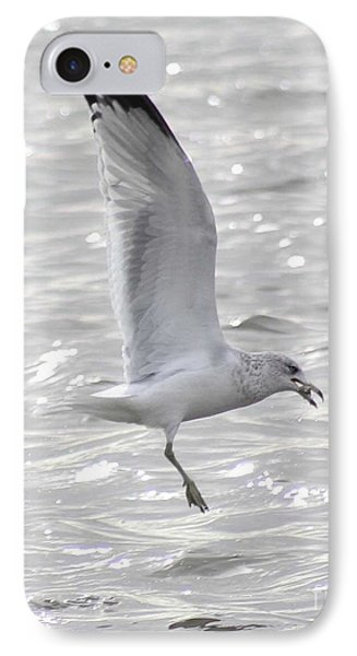 IPhone Case featuring the photograph Dining Seagull by Anita Oakley