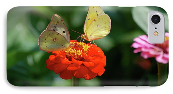 IPhone Case featuring the photograph Dinner Table For Two Butterflies by Thomas Woolworth