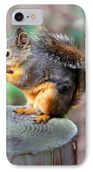 Dinner Time IPhone Case by Robert Bales