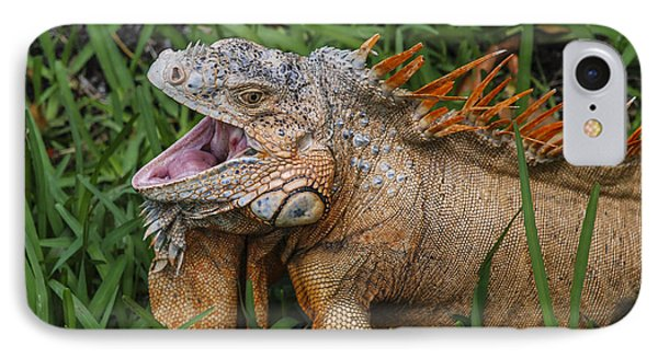 IPhone Case featuring the photograph Dinosaur by Phil Abrams