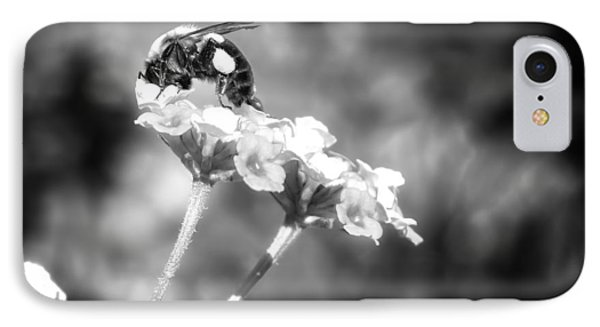 Dive Right In Honey II IPhone Case by Mark Andrew Thomas