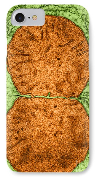 Dividing Mitochondrion Tem Phone Case by Don W Fawcett