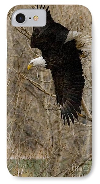 IPhone Case featuring the photograph Diving Eagle by J L Woody Wooden