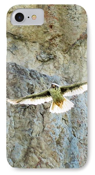 Diving Falcon IPhone Case