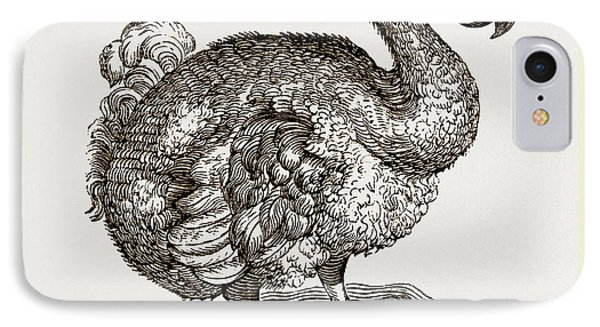 Dodo From Bontius IPhone Case by Litz Collection