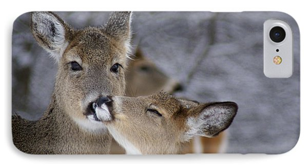 Doe And Fawn IPhone Case
