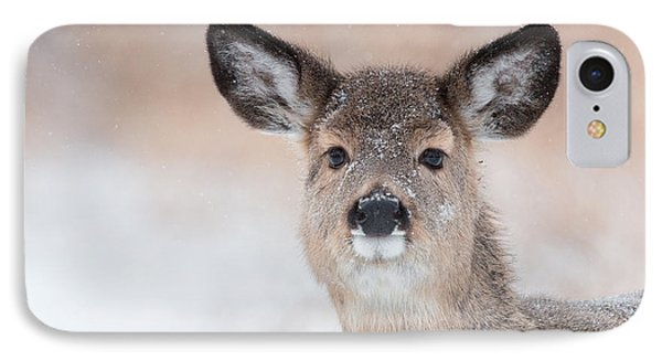 Doe In The Sno IPhone Case