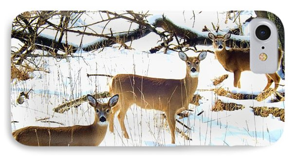 Does In The Snow IPhone Case by Robyn King